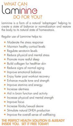 Serotonin Levels, Cortisol, No Response, Stress, Notes, Healthy, Food, Eten, Meals