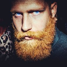 Because everything is better with a moustache. Beards And Mustaches, Moustaches, Ginger Men, Ginger Beard, Ginger Snaps, Ginger Hair, Red Beard, Beard Love, Great Beards