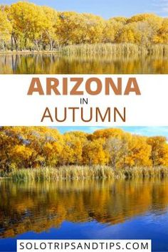 Fall is the perfect time for an Arizona vacation. Weather is beautiful and in Northern Arizona the fall foliage is beautiful. Click to read more and get all the details for camping, fishing, hiking, bird watching, and beautiful scenery in Arizona. Arizona Photography, Arizona Bucket List, Arizona in Autumn, Arizona Road Trip Arizona Road Trip, Arizona Travel, Road Trip Usa, Beautiful Places To Travel, Best Places To Travel, Beautiful Scenery, Usa Travel, Solo Travel, Cottonwood Arizona