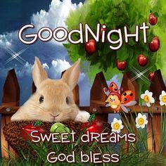 Good night sister and all, sweet dreams♥★♥. Good Night For Him, Good Night Sister, Good Night Thoughts, Good Night Sleep Tight, Good Night Everyone, Good Night Friends, Good Night Gif, Good Night Sweet Dreams, Good Morning Good Night