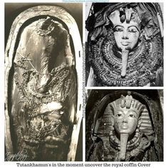 Egyptian Kings, Ancient Egyptian Art, Ancient Aliens, Ancient Greece, Black Historical Figures, Kemet Egypt, European History, American History, Valley Of The Kings