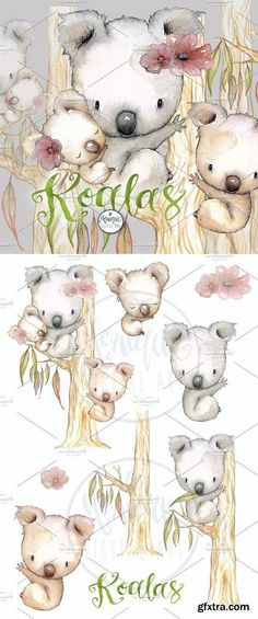 CM - Koala Clipart Watercolor 1636848