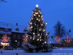 DENMARK | Decorated Christmas tree in a small town in Denmark.