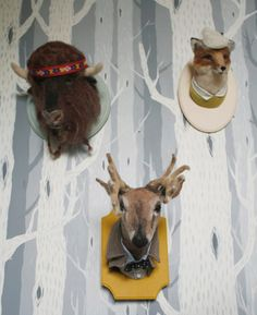 Needle Felted Taxidermy