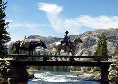 Mule & Horseback Trail Rides - Yosemite | National Park Central Reservations