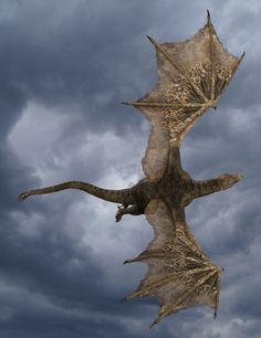 Raptor – The Feathered Dragon HD | 3D Models and 3D Software by Daz 3D