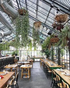 The thing I loved most about LA is the enormous amount of stunning interiors. by anddicted Greenhouse Restaurant, Glass Restaurant, Rustic Restaurant, Outdoor Restaurant, Greenhouse Cafe, Greenhouse Ideas, Coffee Shop Design, Cafe Design, Apartment Herb Gardens