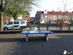 Pingpongtafel Afgerond Blauw bij Praktijkschool Apeldoorn in Apeldoorn