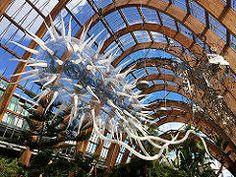 Escherichia Coli by Luke Jerram Sheffield Winter Gardens 2017Broadband Installations Sheffield