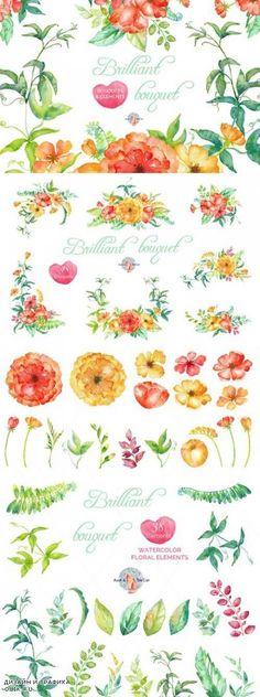 Brilliant Watercolor Clipart - 480931