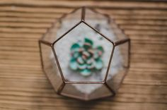Mini Succulent terrarium is perfect small gift for you or your friends. Dodecahedron stained glass - glass polyhedron, which fits perfectly into the modern home interior. Can be used as a vase for succulents, flowers, candle holder or dekor. This shape is handcrafted be me and my brother. It has a pantagon opening to allow you to place items in, and to allow for air circulation. You can choose finishing of terrarium in one of three colors: black, copper and silver. Еach article we safely…