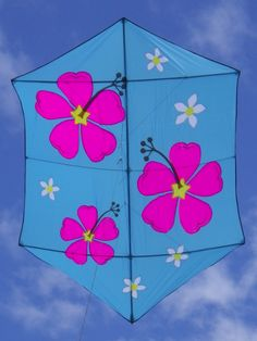 Rokkaku Kite für KAP ( Kite Aerial Photography)