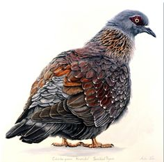 Visit the post for more. Oil Paintings, Bird, Interior, Animals, Animales, Animaux, Birds, Design Interiors, Interiors