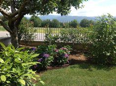 Un angolo suggestivo del giardino progettato