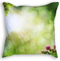 Meadow Throw Pillow Throw Pillows, Prints, Cushions, Decorative Pillows, Decor Pillows, Pillows, Scatter Cushions