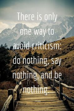 There is only one way to avoid criticism: do nothing, say nothing, and be nothing. - Aristotle