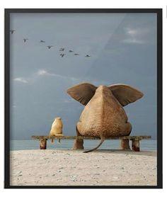 Glasschilderij 2 80x80cm (6145)  #Decoratie #Pakhuis3 #Glasschilderij Home Deco, Camel, Elephant, Olsen, Painting, Animals, Art, Elephants, Kunst