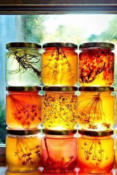 jaagutidrik: Honey infused with herbs Herbes infusant dans du miel Yummy Recipes, Honey Recipes, Raw Honey, Honey Butter, Honey Food, Honey Bread, Pure Honey, Save The Bees, Bees Knees