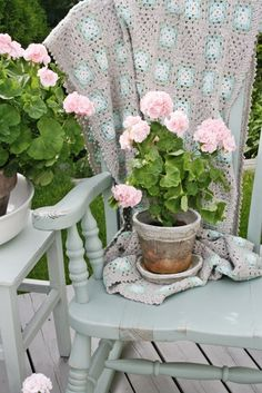 Pink geraniums on the front porch