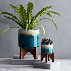 Mid-Century Turned Leg Tabletop Planters - Reactive Glaze
