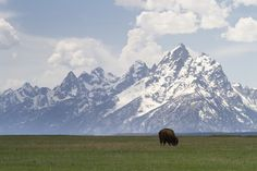 """""""Western Icons"""" by Mike Cavaroc, via 500px. Just guessing but this looks like Wyoming, around Jackson Hole!!"""