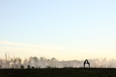 Award-winning silhouette at sunrise.