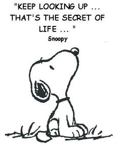 // // Poster Keep looking up .that's the secret of life. Snoopy Charles Schulz --- - - schulz More quotes. Great Quotes, Quotes To Live By, Me Quotes, Inspirational Quotes, Puppy Quotes, Quotes Images, Famous Quotes, Motivational, Keep Looking Up