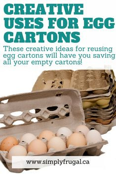 Creative uses for egg cartons. These creative ideas for reusing egg cartons will have you saving all your empty cartons!