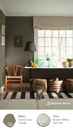 Paint color 'Carter Gray CW-80' from the Benjamin Moore WILLIAMSBURG Collection is an earth tone that combines hints of gray, brown and green; making it the perfect shade to pair with your style and décor.