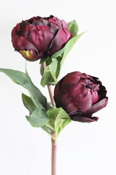 Silk Peony Spray in Wine - Tall
