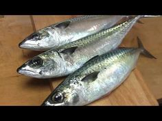 How to fillet mackerel How To Make Sushi, Eastern Cuisine, Halibut, Fish And Seafood, Fries, Japanese, Cooking Ideas, Fried Rice, Cast Iron