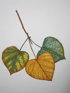 This is a piece of artwork that I have always loved, and thought it would make a great Aspen Leaf Tattoo.