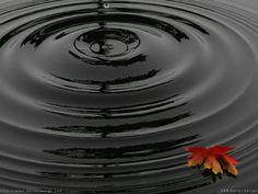 """Blogg do Teosofista: Círculos perfeitos... """"A pedra que no papel nem serve para desenhar uma reta, dentro d´água faz círculos perfeitos.""""  (Heráclito)"""