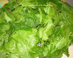 Αμπελόφυλλα (κληματόφυλλα): συντήρηση στην κατάψυξη - cretangastronomy.gr Lettuce, Spinach, Vegetables, Food, Anonymous, Essen, Vegetable Recipes, Meals, Yemek