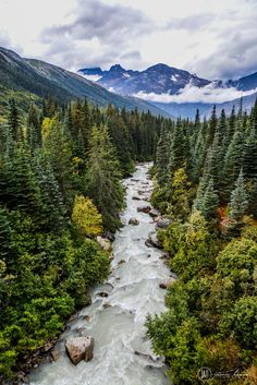 Skagway, Alaska The Effective Pictures We Offer You About Viewing ocean A quality picture can tell you many things. Alaska Travel, Travel Usa, Alaska Trip, Alaska Usa, Visit Alaska, Cruise Travel, Luxury Travel, Places To Travel, Places To Visit