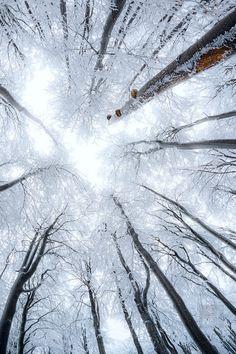 wonderous-world:  Fichtel Mountains Bavaria Germany by Stephan Amm