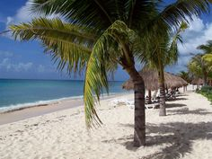 Nachi Cocom in Cozumel.  This has to be the best beach I've been to.  So peaceful!  The picture doesn't even do it justice.