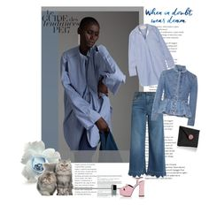 """***WHEN IN DOUBT, WEAR DENIM !***"" by scapin ❤ liked on Polyvore featuring Yohji Yamamoto, RED Valentino, Yves Saint Laurent, By Malene Birger, Alexander McQueen and Rebecca de Ravenel"