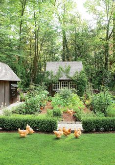 Dream Garden! It Even Has a Chicken Coop #VegetableGarden #gardendesignvegetable