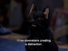 Sabrina the teenage witch salem the cat
