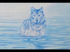 Cómo dibujar un lobo - YouTube