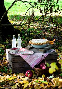 Picnic amongst the leaves.