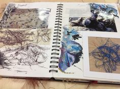 Observational drawings shells unit 1 textiles