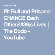 Pit Bull and Prisoner CHANGE Each Other's Lives | The Dodo - YouTube