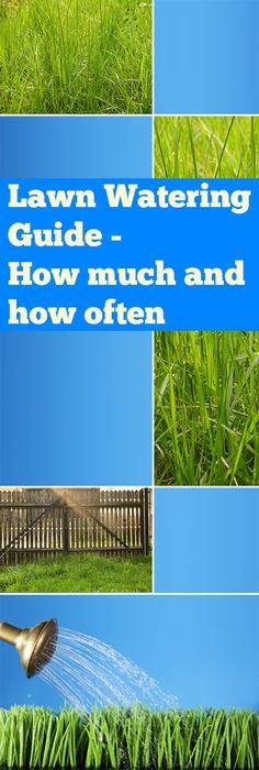 Lawn Watering Guide- How much and how often