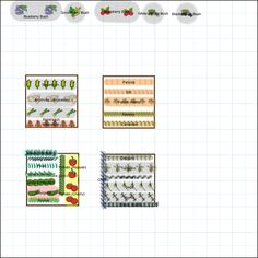 Garden Plan - 2013: raised beds