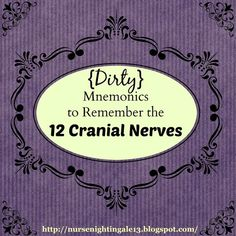 Nurse Nightingale: {Dirty} Mnemonics to Remember the 12 Cranial Nerves