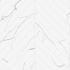 Bianco Chevron Porcelain Tile from Stone Source Contemporary Tile, Contemporary Interior Design, Bathroom Interior Design, Interior Ideas, Chevron Bathroom, Bathroom Floor Tiles, Tile Floor, Chevron Walls, Countertop Decor