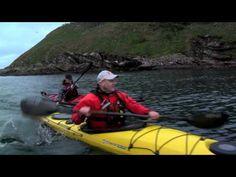 Sea Kayaking!
