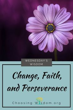 Change, Faith, and Perseverance - Choosing Wisdom Look for opportunities to love, serve, and laugh today because nothing is stopping you, except you.